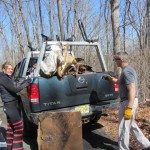 ny nj trail maintenance day photo